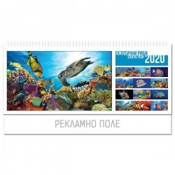 Календар пирамида Екзотични риби