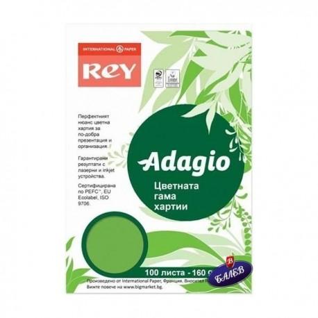 ADAGIO картон Spring Green А4 100л.