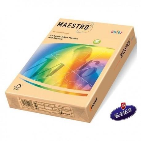Maestro к-н цв. A4 250л. SA24